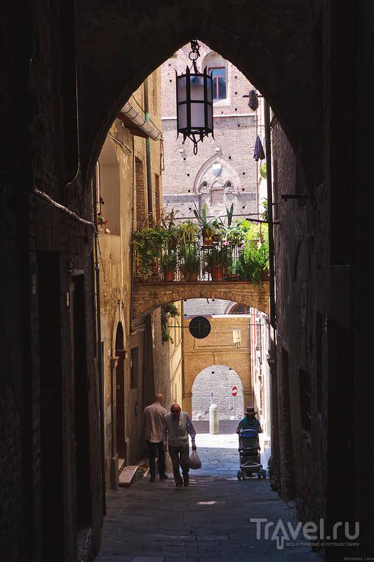 Один день на Сиену: мало или достаточно? / Италия