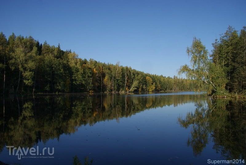 Cело Ельцы / Россия