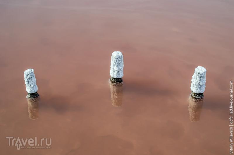 Куяльницкий лиман. Осень 2015 / Фото с Украины