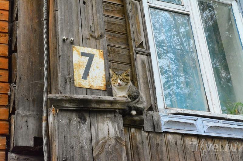 Муром: по городу / Россия