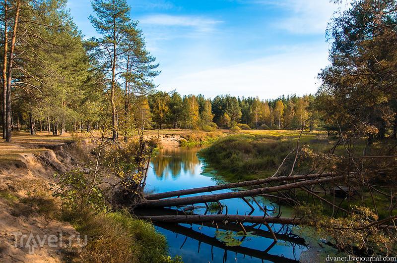 Заблудившийся в лесу. Успеть любой ценой / Фото из России