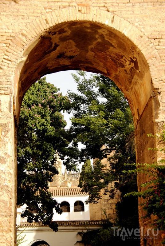 Королевский Алькасар в Севилье / Испания