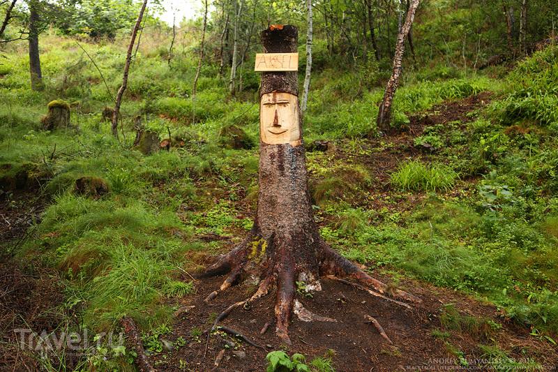 Природный парк Аксла (Aksla, Олесунн, Норвегия) / Фото из Норвегии
