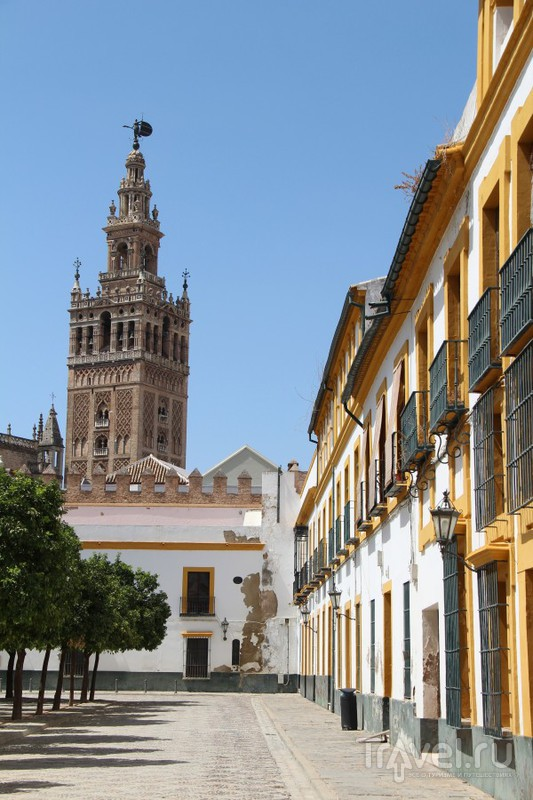 Самый большой  готический собор в Европе: Санта-Мария-де-ла-Седе в Севилье / Испания