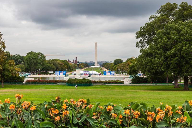 Автопутешествие по востоку США. Washington / Фото из США