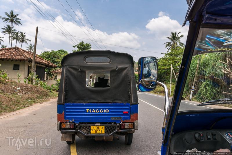 Шри-Ланка 2015. Мыс Дондра / Фото со Шри-Ланки