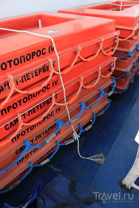 В Краснодар по единому билету / Россия