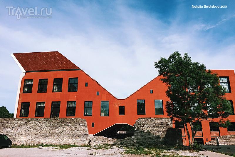 Нарвский колледж тартуского Университета / Фото из Эстонии