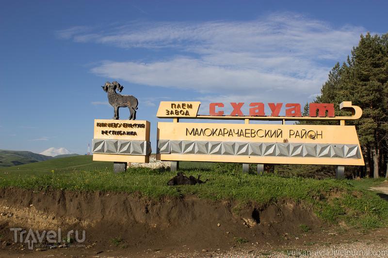 """""""Немецкий"""" аэродром на Эльбрусе / Фото из России"""