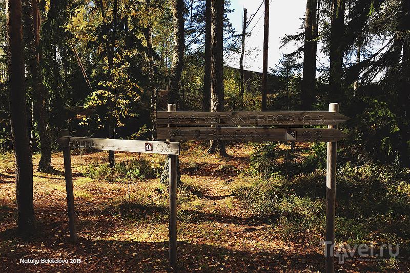 Национальный парк Нууксио в Финляндии / Финляндия