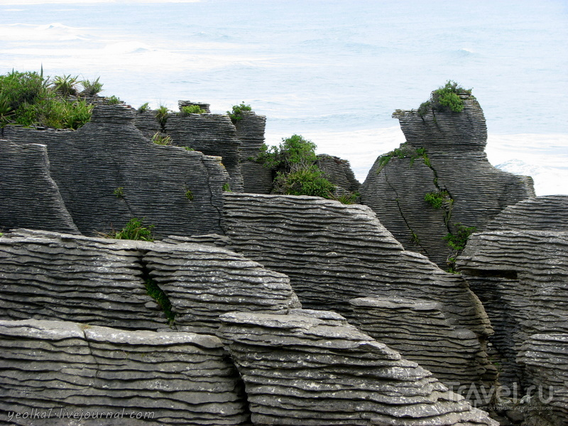 В стране антиподов. Заповедник Папароа - Pancake rocks / Фото из Новой Зеландии