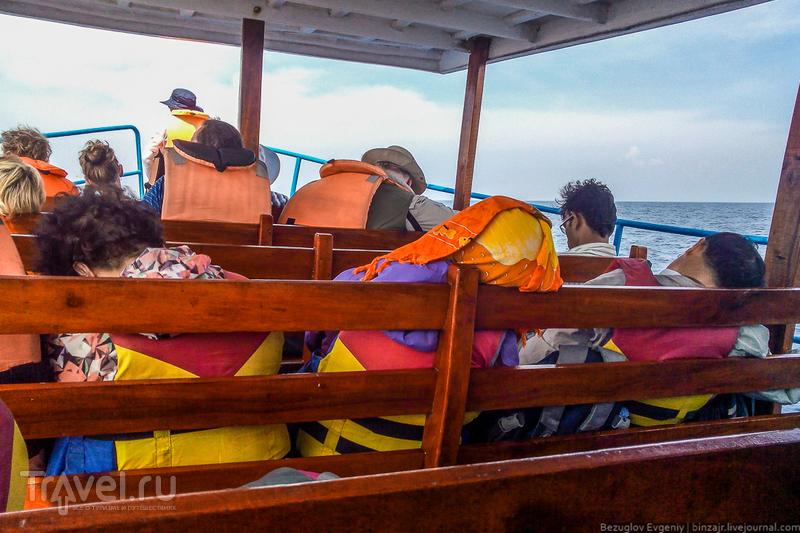 Шри-Ланка. Голубые киты / Фото со Шри-Ланки