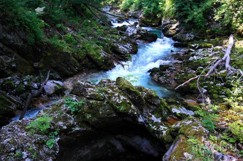 Ущелье Винтгар в Словении / Словения