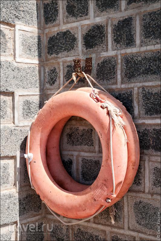 Дайвинг сафари в Судане / Фото из Судана