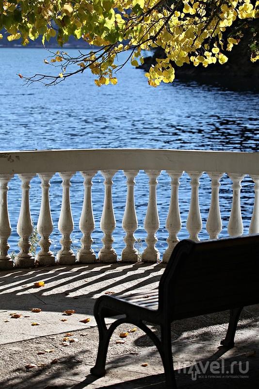 Дачная осень у озера Рица / Фото из Абхазии
