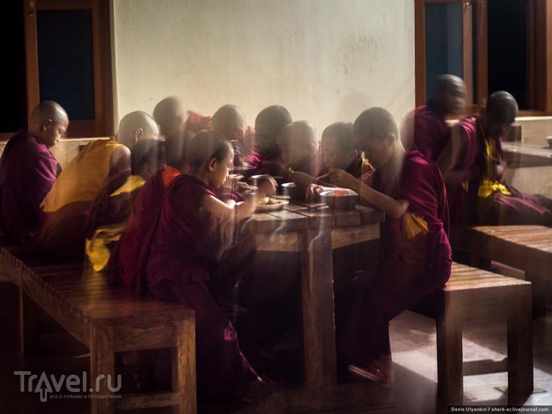 """""""Неизвестные Гималаи"""". Акклиматизация и полёт / Фото из Индии"""