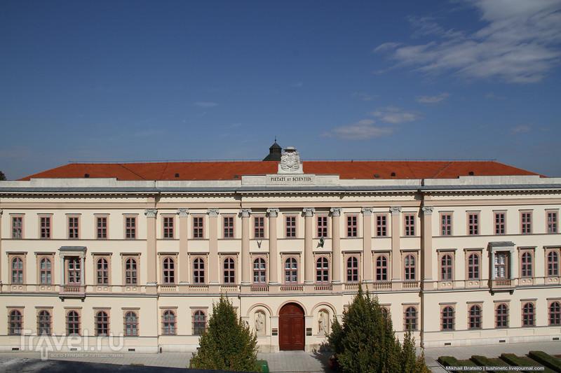 Панорама Дуная и базилика святого Адальберта в Эстергоме / Венгрия
