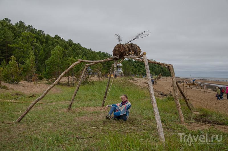 """Комар - один из самых популярных объектов на """"Тайболе"""""""