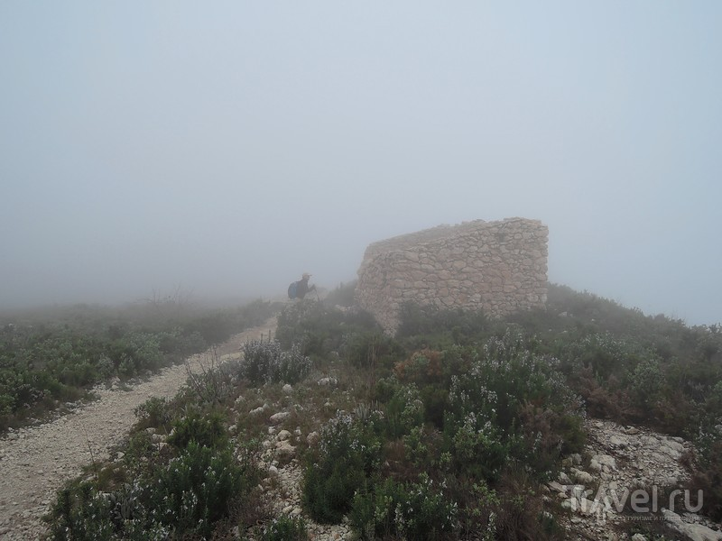 Vall de Gallinera. Скала с аркой (La Peña Foradá) и ежики в тумане / Фото из Испании