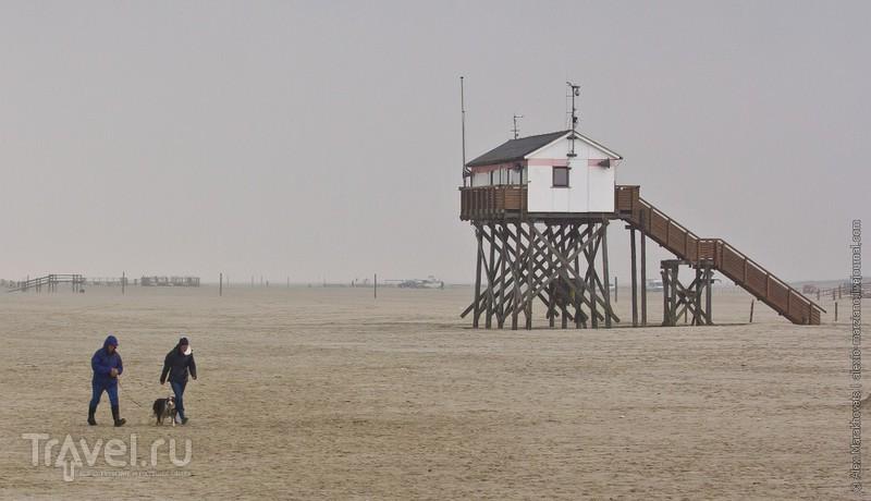 Кин-дза-дза по-немецки / Фото из Германии