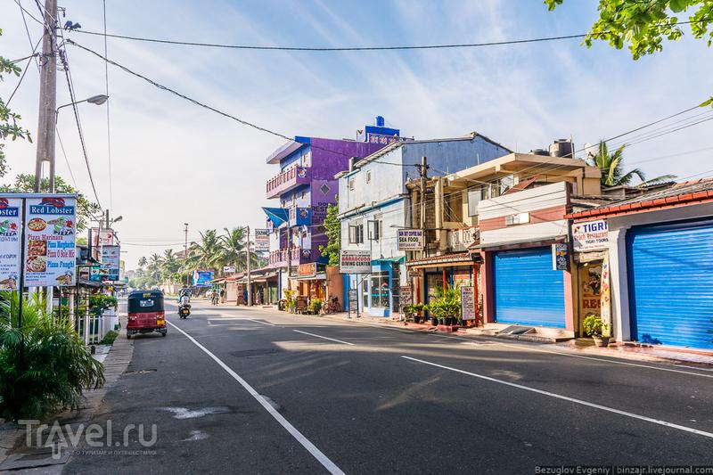 Шри-Ланка 2015. Хиккадува / Фото со Шри-Ланки