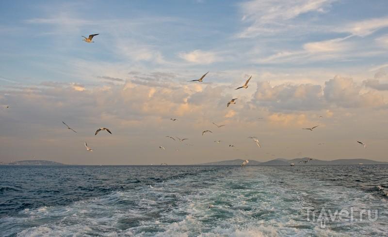 Морская прогулка к Принцевым островам / Фото из Турции