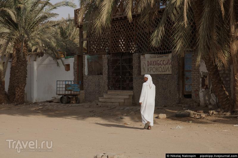 Египетский день в Дахабе / Фото из Египта