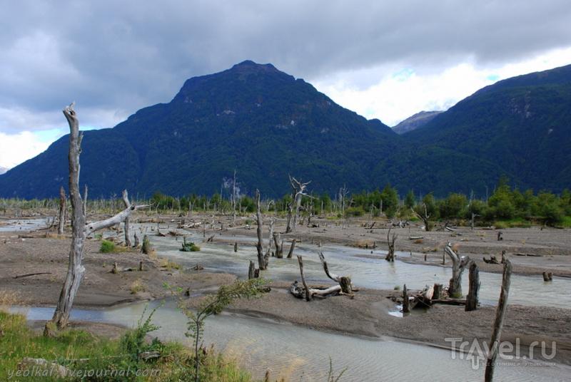 Чили - сбыча мечт! Карретера Аустраль. Дорога к озеру Хенераль Каррера / Фото из Чили