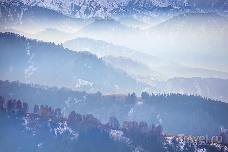 Сквозь туманы и страны / Фото из Великобритании