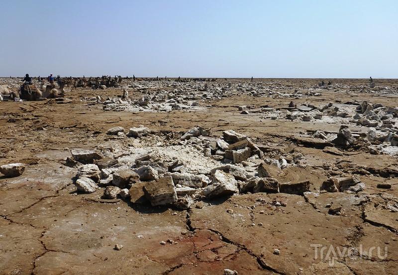 Как добывают соль. Мой персональный ад меняет визуализацию / Фото из Эфиопии