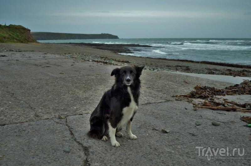 Малоизвестная Ирландщина - две живописные деревни на берегу моря (графство Корк) / Фото из Ирландии