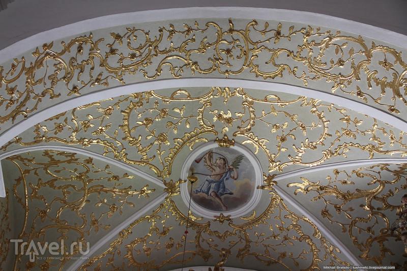 Собор Вознесения Пресвятой Девы Марии в Вараждине / Хорватия