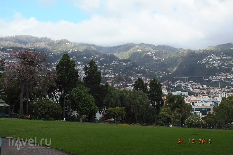Мадейра. Фуншал. Парк / Португалия