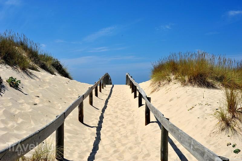 Португалия, Алгарве: самый красивый, но бесполезный пляж в Португалии / Фото из Португалии