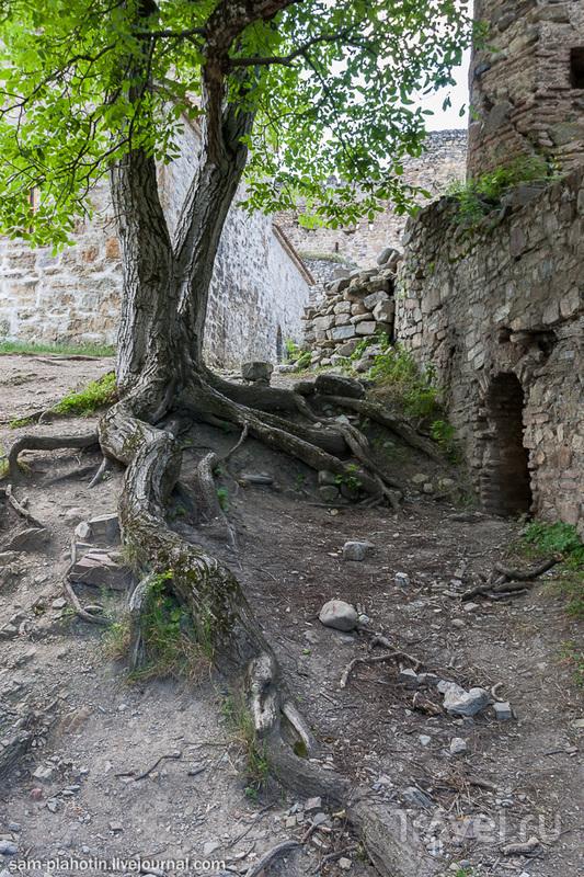 Грузия. Крепость Ананури / Фото из Грузии