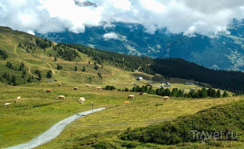 Jungfraujoch, Switzerland - Top of Europe / Фото из Швейцарии