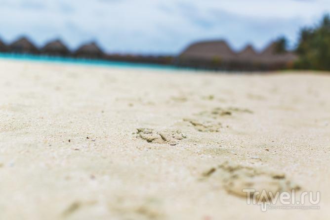 Sun Aqua Vilu Reef на Мальдивах / Мальдивы