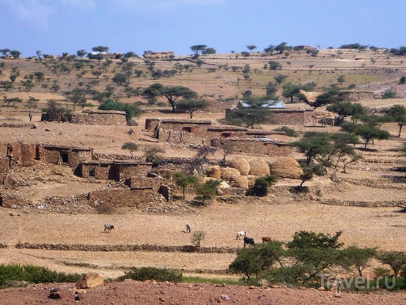 Как ходят в церковь в Эфиопии / Фото из Эфиопии