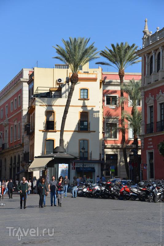 Когда в Севильи жилось хорошо? / Фото из Испании
