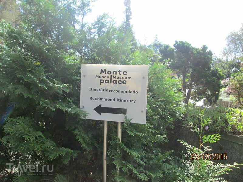 Португалия. Мадейра. Тропический сад Монте / Португалия