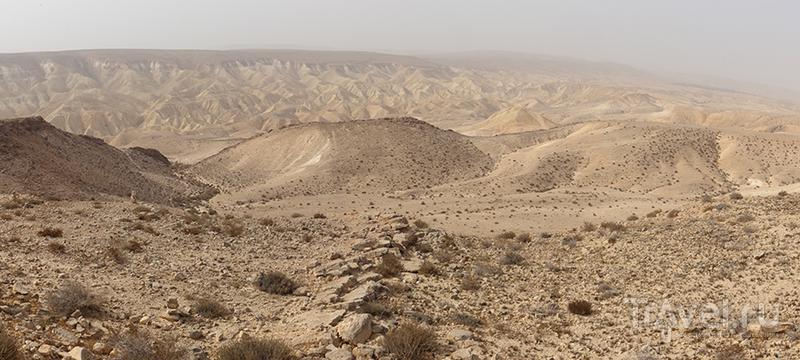 Израиль. Природа / Фото из Израиля