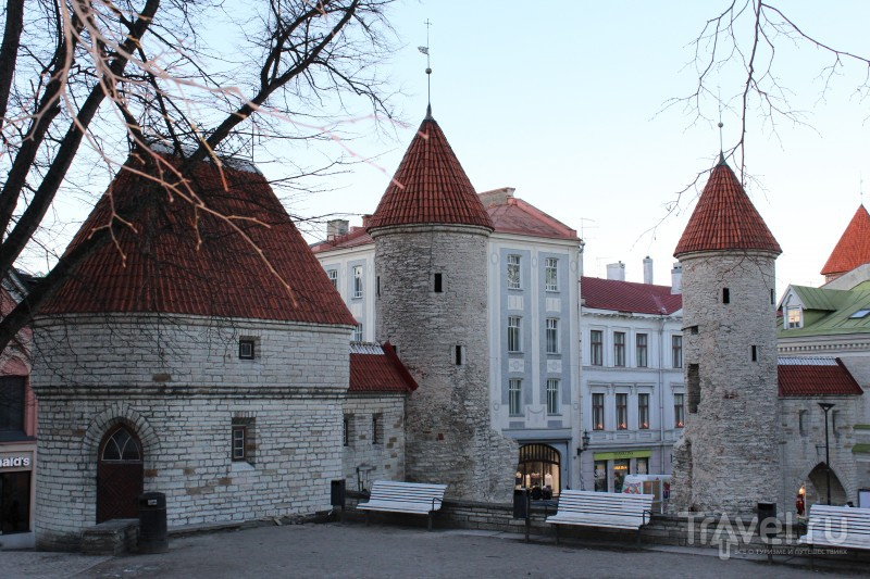 Таллин, декабрь 2015 / Фото из Эстонии