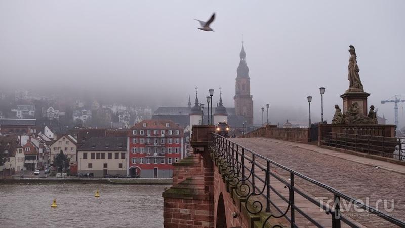 Гейдельберг в тумане / Фото из Германии