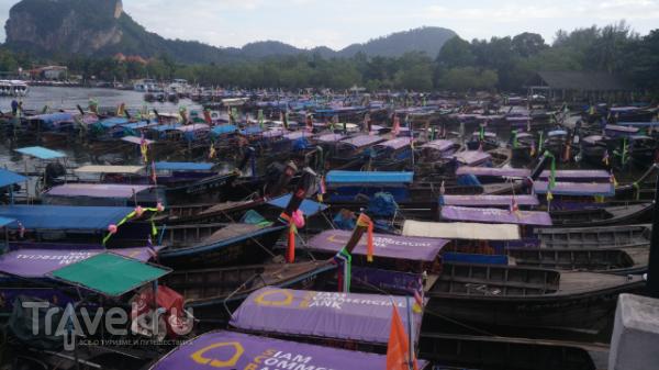 Длиннохвостые / Таиланд