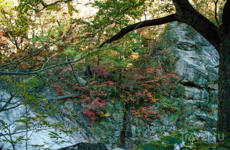 Seoraksan - корейское паломничество / Фото из Южной Кореи