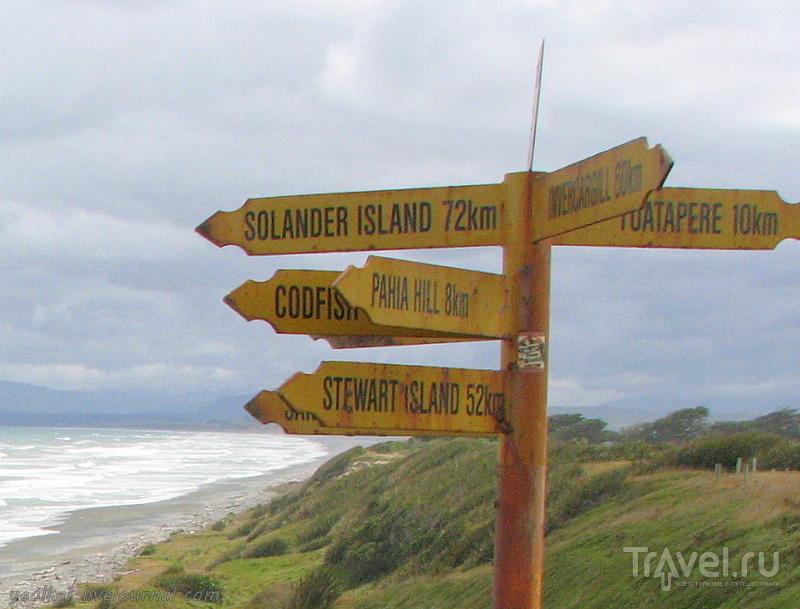 В стране антиподов. Южная живописная дорога / Фото из Новой Зеландии