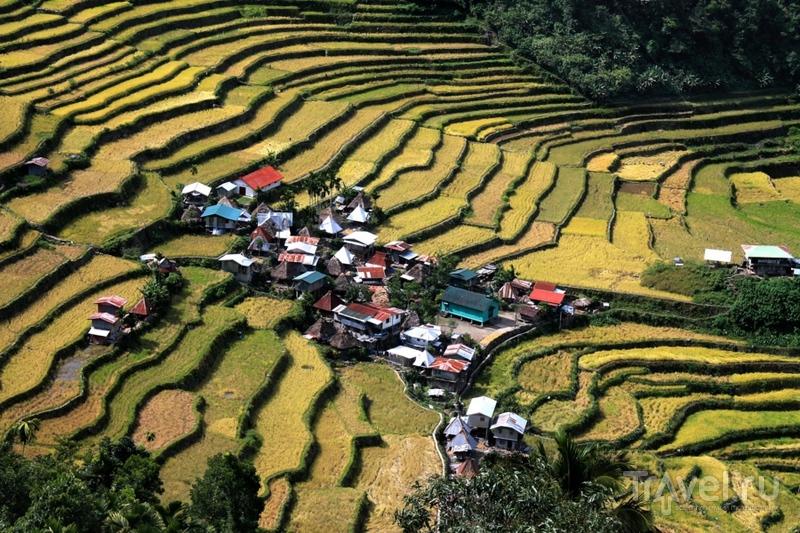 Филиппины: рисовые террасы Банауэ / Филиппины