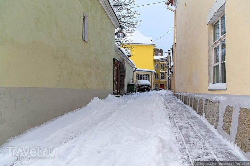 Снежный Таллин / Фото из Эстонии