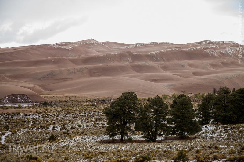 Национальный парк Great Sand Dunes / Фото из США