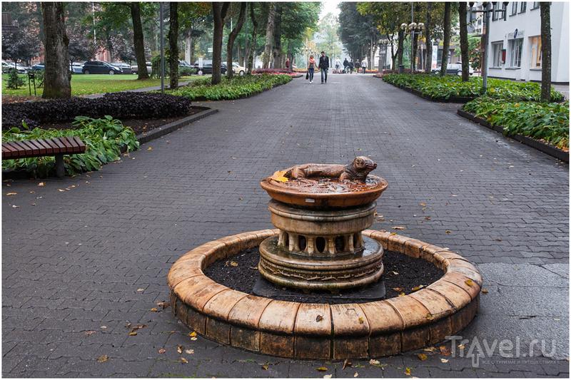 Друскининкай - город с мужским характером! / Фото из Литвы